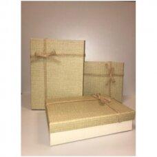 Popierinė dvispalvė dviejų dalių dovanų pakavimo dėžutė 21 x 29 x 9,5(1 mod), 3 vnt komplektas