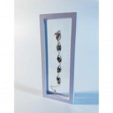 23 x 11 x 2cm(h) Universali dovanų pakavimo dėžutė 3D  su tampria plėvele - papuošalams, juvelyrikai, numizmatikai, nuotraukoms. Balta spalva